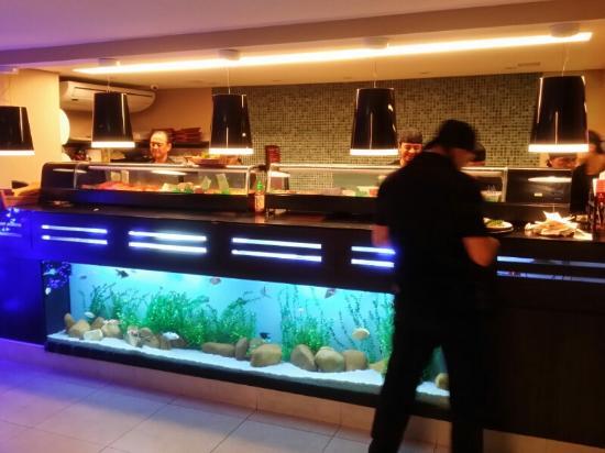 Kyuurai: Interior com aquário