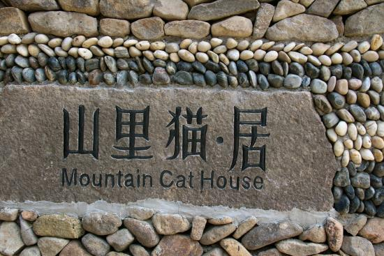 Mountain Cat Inn
