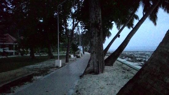 Dolphin Resort: .