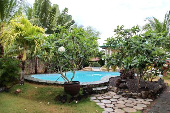 Alona Swiss Resort: бассейн