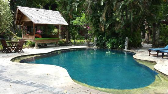 Rambutan Boutique Hotel: Pool near the front of the property