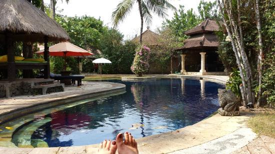 Rambutan Boutique Hotel: Large pool at the back near restaurant