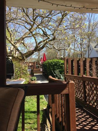 Clay Corner Inn: Sitting on deck facing pool and bird feeder