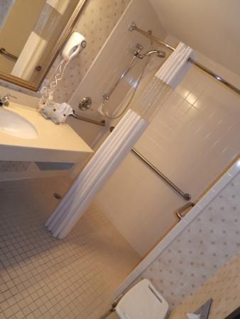 Wingate by Wyndham Duluth/Atlanta: Handicap Accessible Roll-in Shower