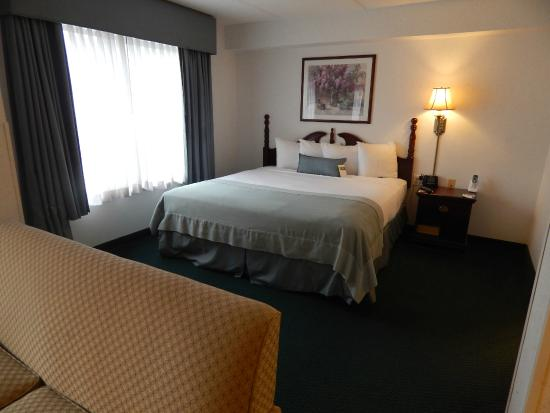 Wingate by Wyndham Atlanta/Duluth: King Suite