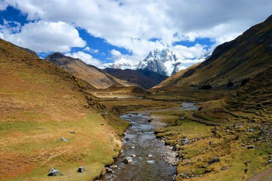 Andean Condor Voyager
