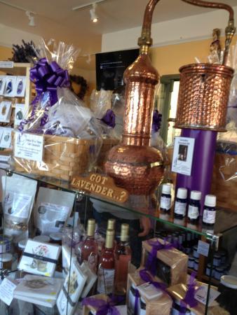 Lavender Wind Farm: Got Lavender?  What about every lavender concoction under the sun?