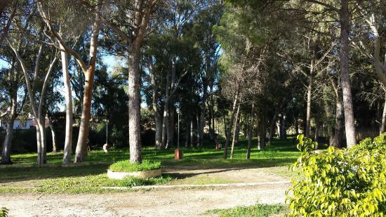 Views around Camping Playa las Dunas