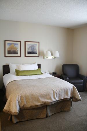 Candlewood Suites Columbus Fort Benning: Single Queen Suite bedroom