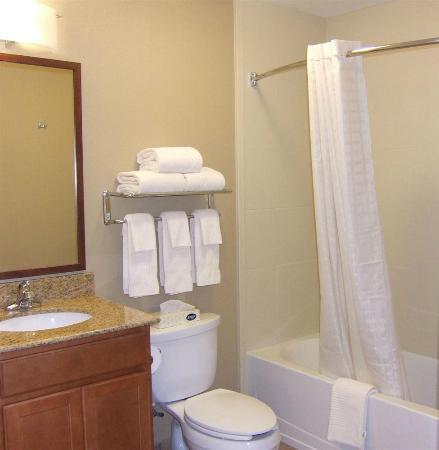 Candlewood Suites Columbus Fort Benning: Standard suite bathroom