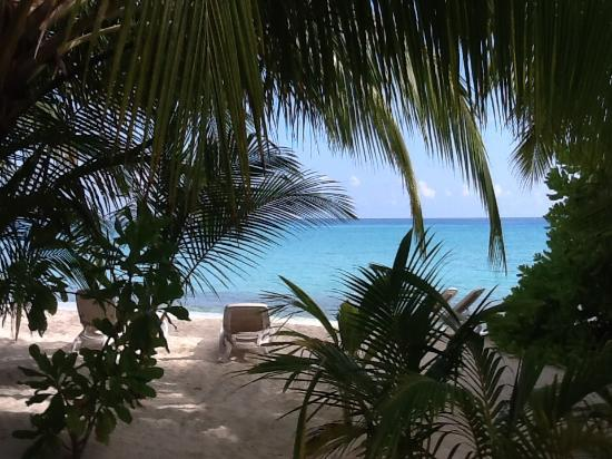 Kuramathi: View from beach villa
