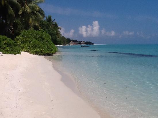 Kuramathi: Beach, lagoon side