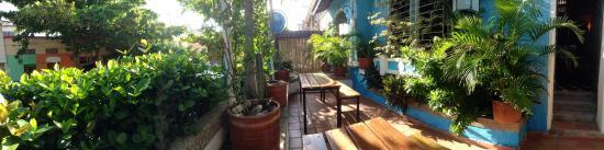 Aluna Casa y Cafe : Front Terrace