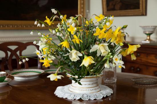 Parham House & Gardens: Fresh spring flowers - ©ElizabethZeschin