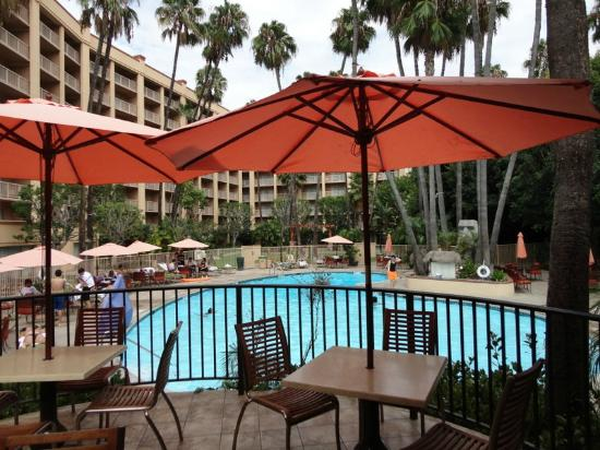 courtyard picture of crowne plaza hotel san diego. Black Bedroom Furniture Sets. Home Design Ideas