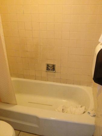 Rodeway Inn Bellows Falls: mold!