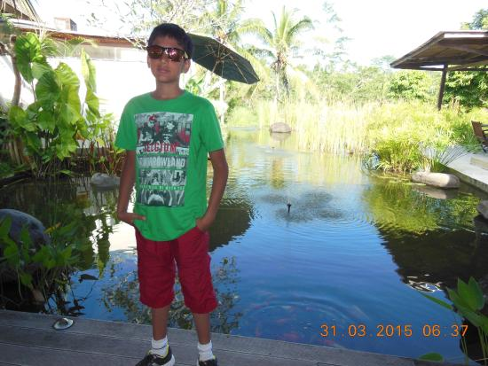 Pandawas Villas: beautiful landscaping and pond with colored fishes swimming in it