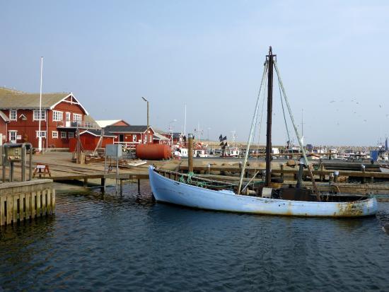 Albaek, Dinamarca: Ålbæk havn
