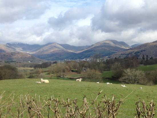 High Wray Farm: The view from the gate