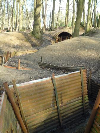 Frontline Tours: Trenches