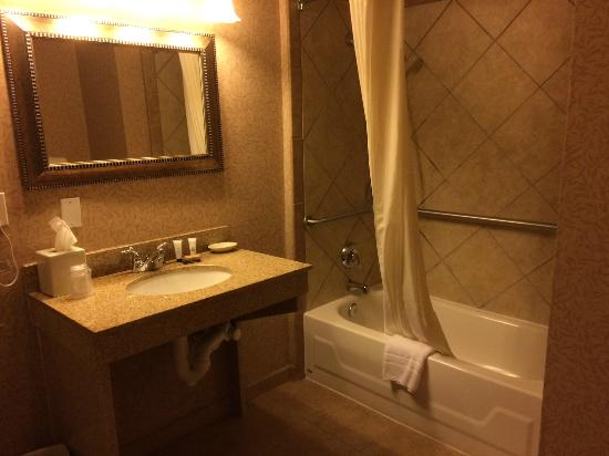 Red Lion Hotel Portland Airport : Bathroom in room 114A