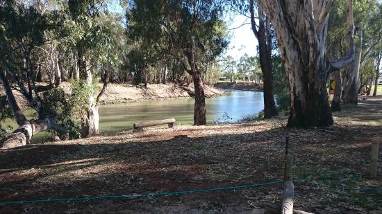 Balranald Caravan Park : Peace and Tranquility by the river