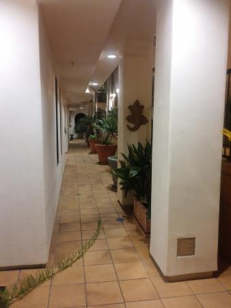 Valentina Suites: Outside Hall lots of plants and water features
