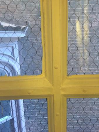 Mt. Vernon Baltimore: Window view
