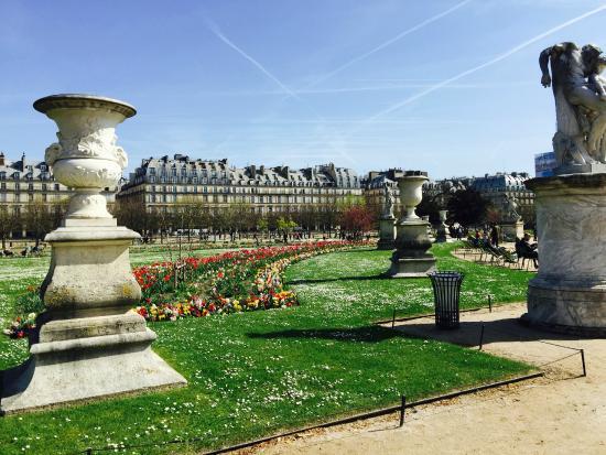 Jardim no inverno picture of jardin des tuileries paris for Jardin des tuilerie