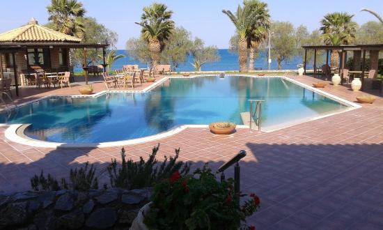Oasis Hotel : πισίνα
