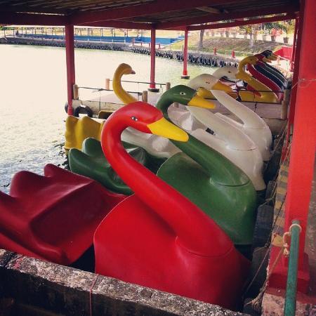 Paco do Lumiar, MA: No Wang Park tem pedalinhos