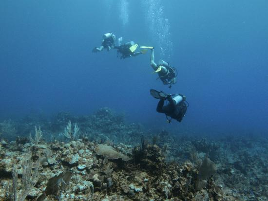 Nomad Divers: My dive buddies and Dive Master drifting along.