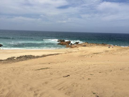Baja Buggys : The view from the beach stop