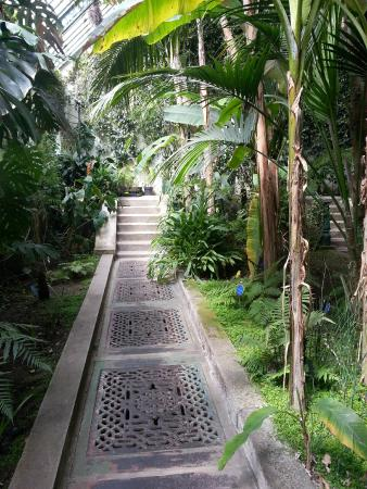 Emejing Real Jardin Botanico Historia Contemporary - Amazing House ...