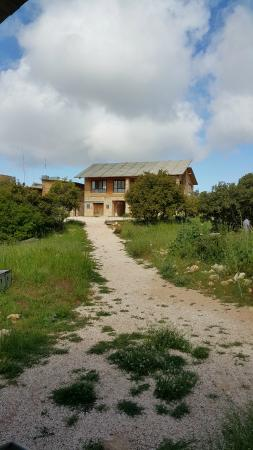 Ajloun Forest Reserve: Dining Hall & Reception