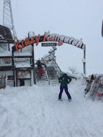 Krazy Kanguruh : Snow day!