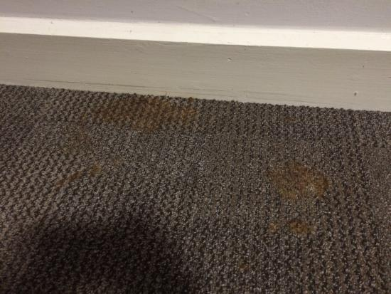 University of Kent: Stains