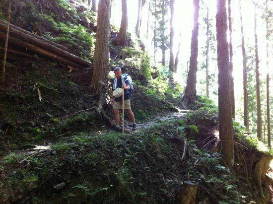 Shikokuhenro : Shikoku pilgrimage route