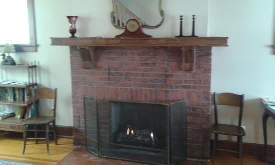 Golconda Lock and Dam 51 Homes: fireplace