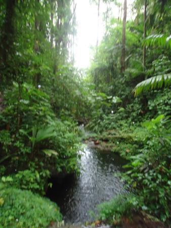 Vista de una de las piletas naturales fotograf a de for Piletas naturales argentina
