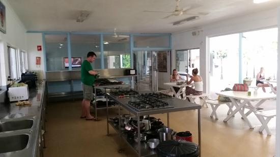 Absolute Backpackers Mission Beach : communal kitchen