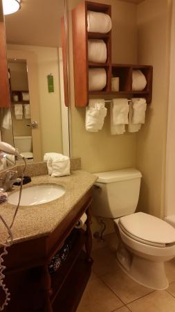 Hampton Inn Lancaster: bathroom
