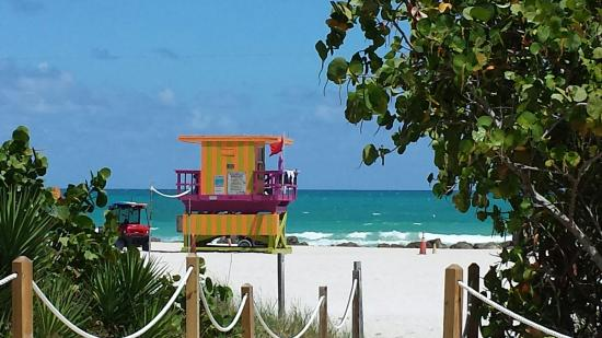 Red South Beach Hotel Picture Of Red South Beach Hotel Miami Beach Tripadvisor