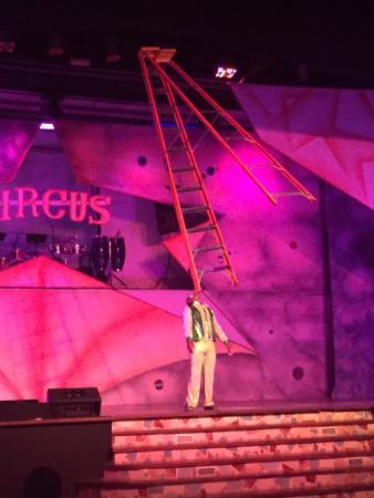 Occidental Caribe : Kija circus show