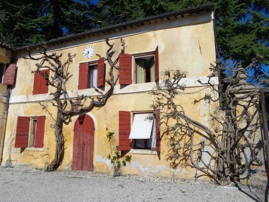 Villa Barbaro: bellissima