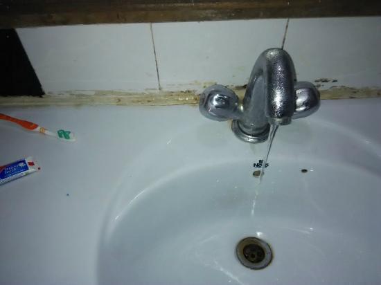Hotel de Park: Leaking taps