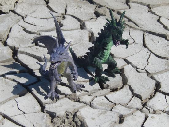 Salton Sea Mud Volcanoes: Watch out for Dragons