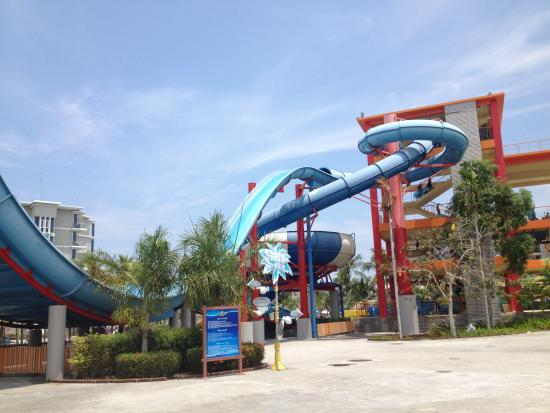 Splash Jungle Waterpark: Slides
