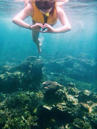 Redang Beach Resort : Underwater using the digital camera rented at the resort :)