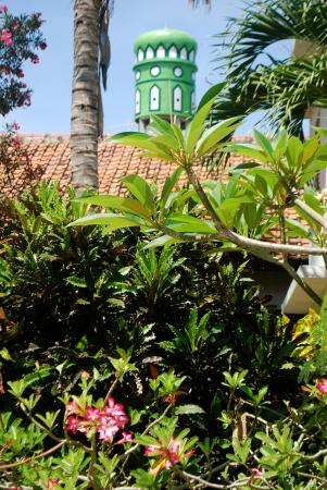 Rumah Saga: Garden and mosque